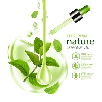 페퍼민트 잎, 자연 에센셜 오일