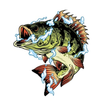 빈티지 스타일 격리 된 그림에서 물 밝아진 개념에 농어 물고기
