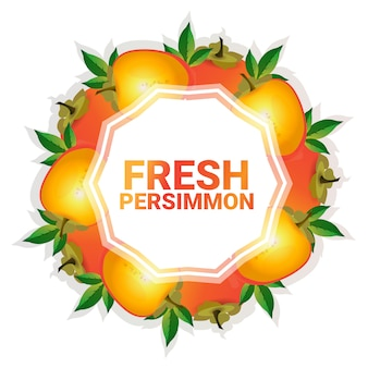 Persimmon fruit colorful circle copy space organic over white pattern background
