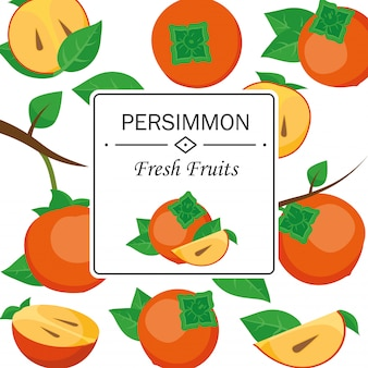 Persimmon tree branch vector illustration. vector stock illustration of fruit persimmon isolated for decorative poster.