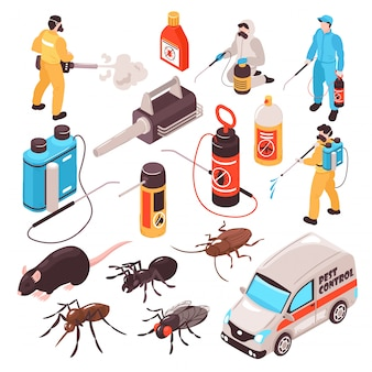 Pest control disinfection service isometric icons set with ant rat cockroach  professional exterminators team equipment