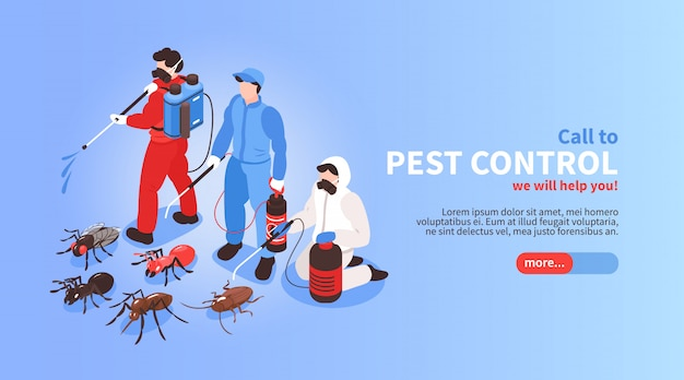 Pest control house hygiene disinfection service isometric website banner with professional team exterminating insects background