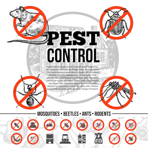 pest-control-infographics_1284-10246.jpg