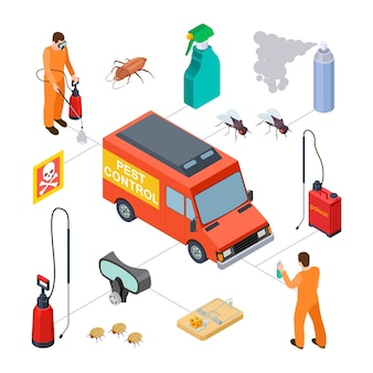 Pest control isometric elements