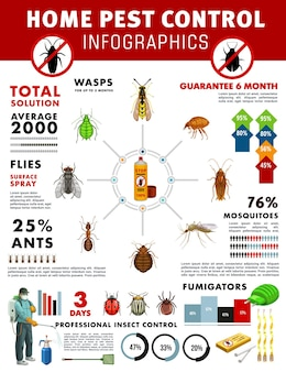 Pest control service infographics with graphs and charts of house pest insects