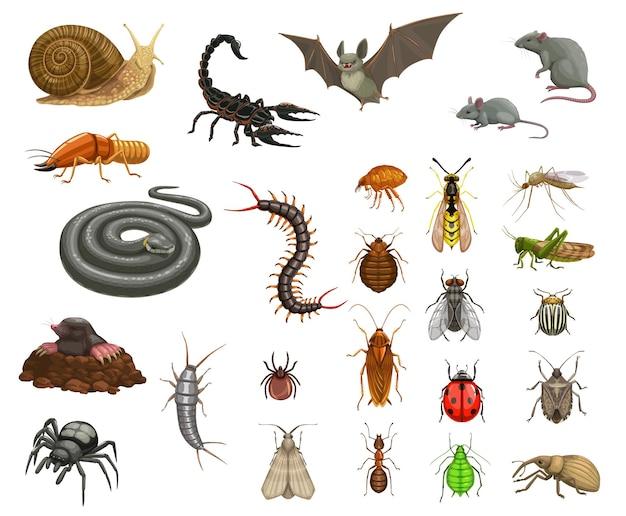 害虫昆虫の消毒、動物の非難 Premiumベクター