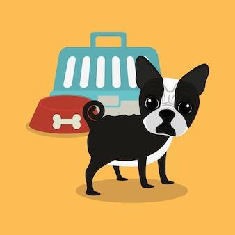 Pet care center service icons