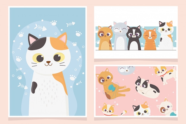 Pet cats adorable playing fishbone paw cartoon cards illustration