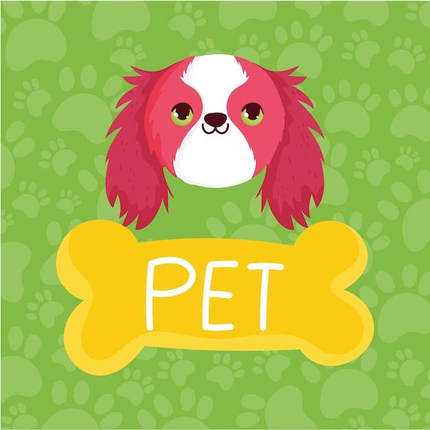 애완 동물 귀여운 강아지