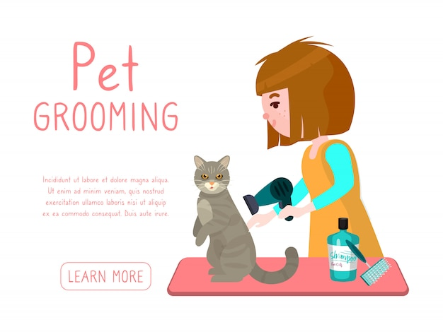 Зоосалон бизнес. грумер девушка сушит кота после стирки. рекламный баннер груминг салона для домашних животных.