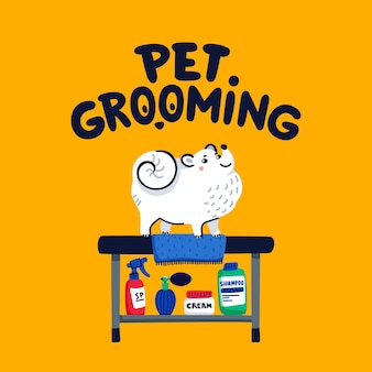 Pet grooming concept white lapdog on grooming table at salon Premium Vector