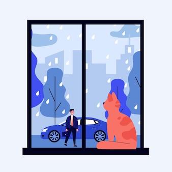 Домашнее животное смотрит в окно, наблюдая за своим владельцем на улице под дождем