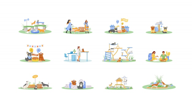 Pet owner flat color vector faceless characters set. cat grooming salon. dog play on playground. goat in playhouse. pet care activities isolated cartoon illustrations on white background