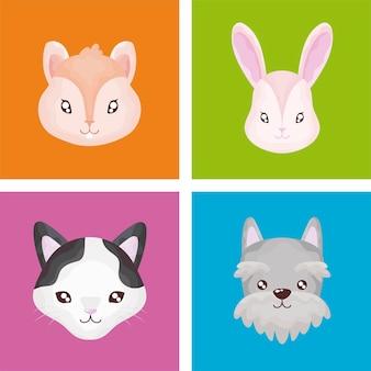 애완 동물 설정 아이콘, 고양이 개 토끼 햄스터 컬러 배경 그림