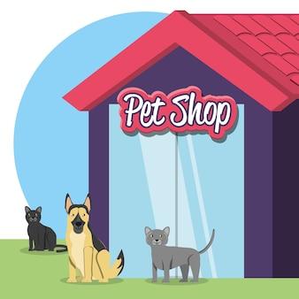 Фасад здания магазина домашних животных