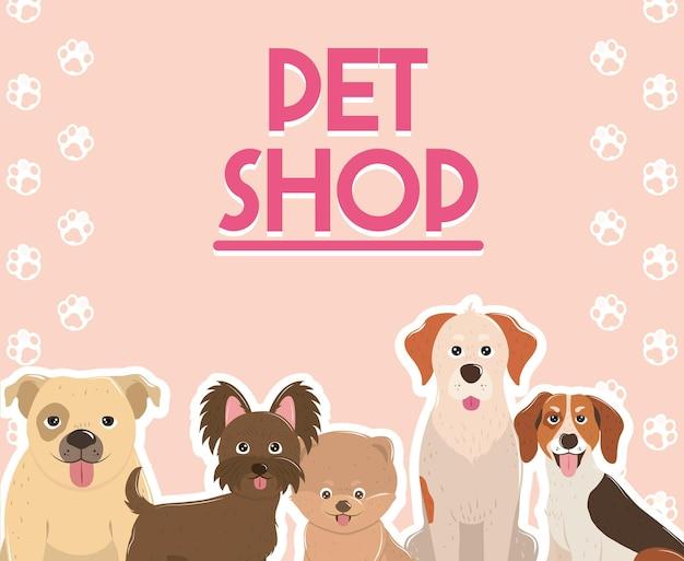 애완 동물 가게 귀여운 강아지 동물 송곳니 다양한 품종