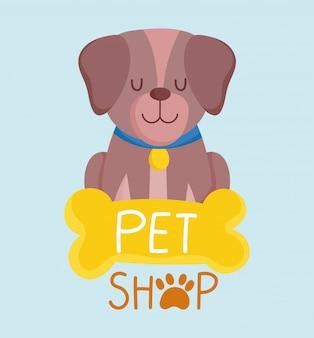 애완 동물 가게, 칼라와 뼈 동물 만화 벡터 일러스트와 함께 앉아 작은 개