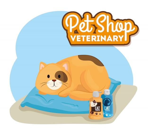 Pet shop veterinary with little cat