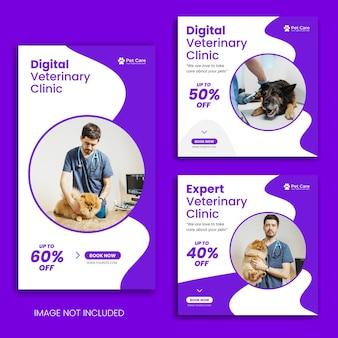 Pet social media post or veterinary banner pet care instagram story or facebook banner pack