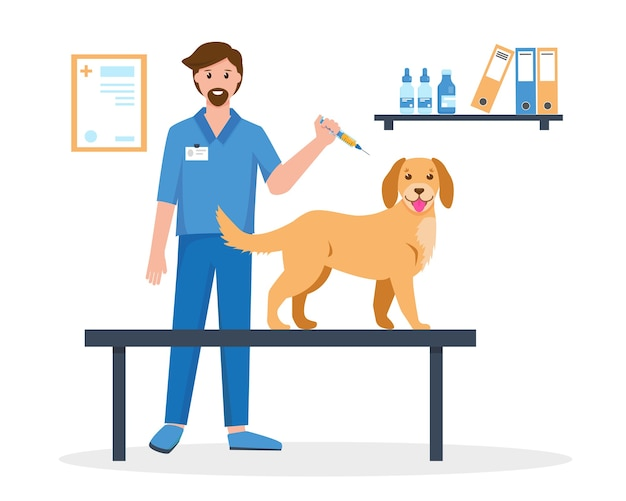 Pet vaccination concept. veterinarian doctor making vaccine injection to a dog in vet clinic.