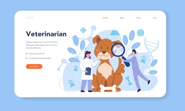 Pet veterinarian web banner or landing page