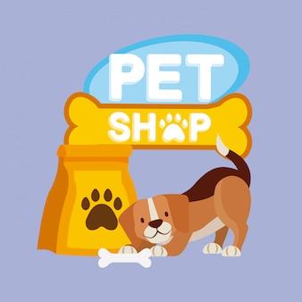 Animali domestici e veterinari Vettore gratuito