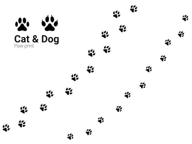 Pets or animals paw trail