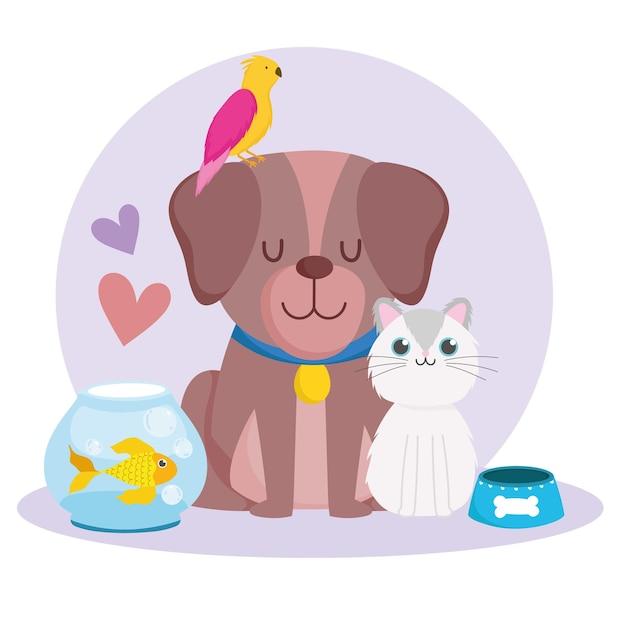 애완 동물 귀여운 강아지 고양이 앵무새 물고기 동물과 음식 벡터 일러스트 레이 션