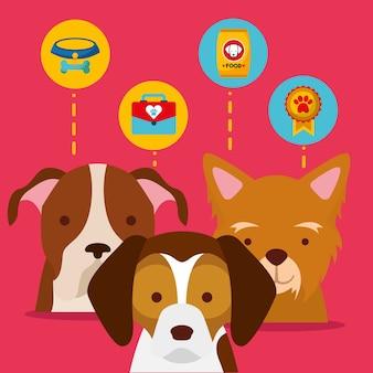 ペット、犬、動物、家庭、ケア、食品、メダル Premiumベクター