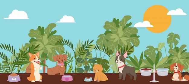 子供、ボストンテリア、ビーグル犬、ハスキーの最高の国内犬の品種の漫画イラストと家族のためのペットの犬。 Premiumベクター