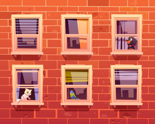 Pets in windows, cat, dog and parrot on windowsill