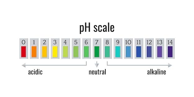 흰색 배경에 고립 된 산성 및 알칼리성 솔루션에 대한 ph 스케일 차트 미터