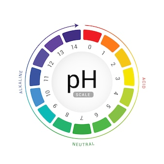 Ph 스케일 표시 차트 다이어그램 산성 알칼리성 측정. ph 분석 벡터 화학 스케일 값 테스트.