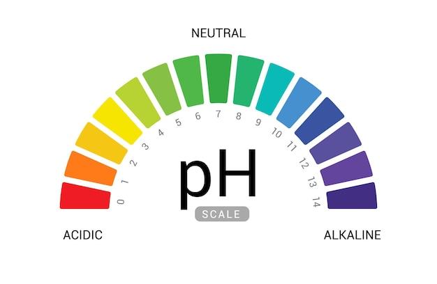 Ph 스케일 지표 차트 다이어그램 산성 알칼리성 측정