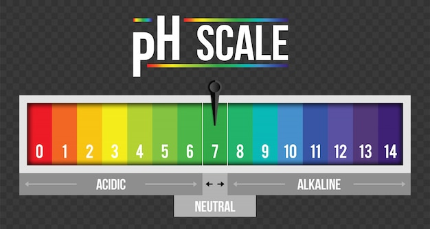 Ph scale value infographic, litmus paper element