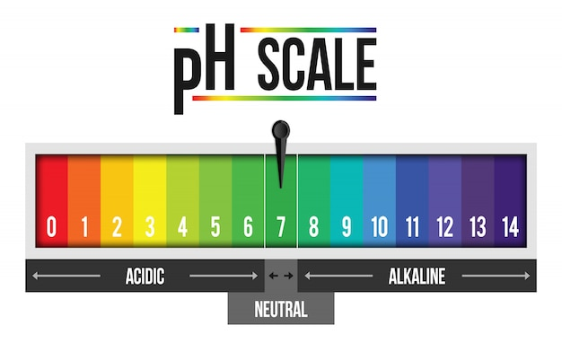Ph scale value infographic