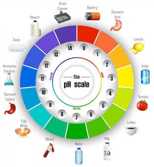 The ph scale wheel