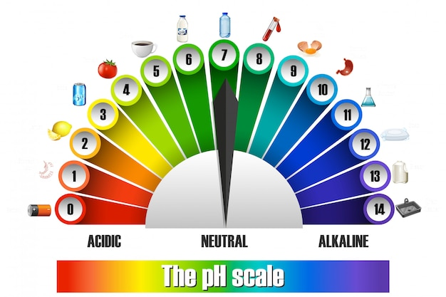 The ph scale on white background