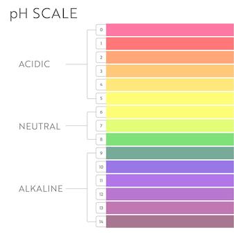 График шкалы значений ph. инфографика кислотно-щелочного баланса. образовательный плакат