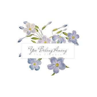 Phlox flowers banner
