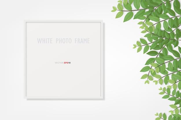 Photo frame and green leaf.