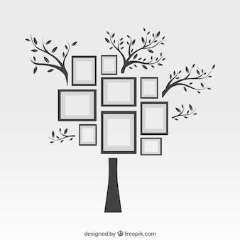 Photo frames on tree