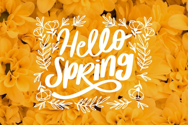 Photo with hello spring lettering and yellow flowers