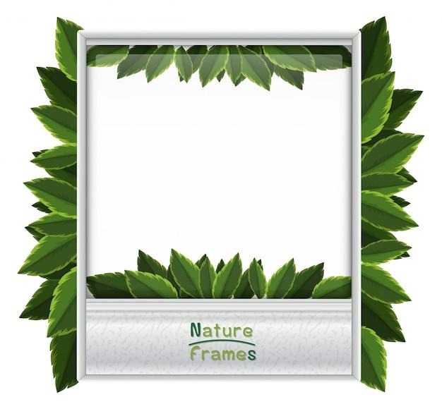 Фоторамка с зелеными листьями