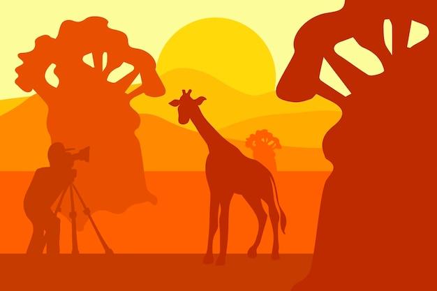 Photographer photographs giraffe in nature. morning safari park landscape. vector