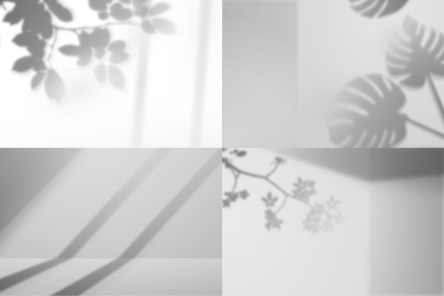 Photography editor program shadows overlay effect with plants