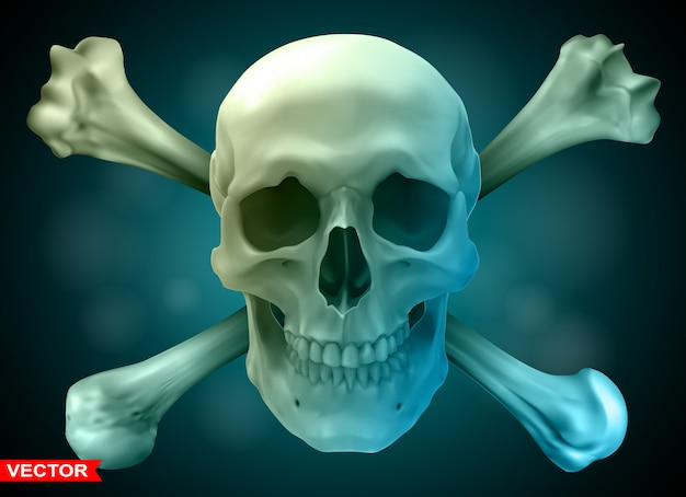 Фотореалистичный человеческий череп со скрещенными костями Premium векторы