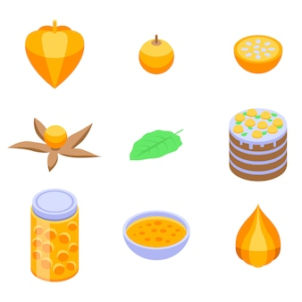 Physalis icons set