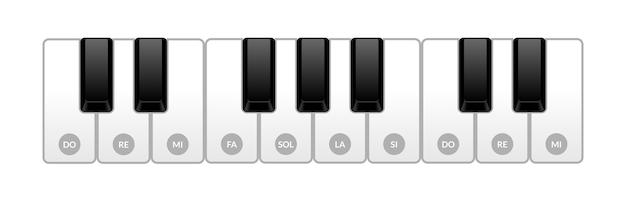 피아노의 키보드. 어린이를위한 음악적 규모. 고립 된 그림
