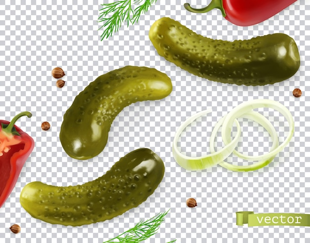 Pickled cucumbers. gherkin, dill, pepper, onion, coriander seeds. 3d realistic vegetables